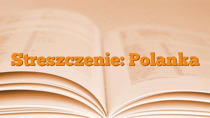 Streszczenie: Polanka