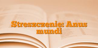 Streszczenie: Anus mundi