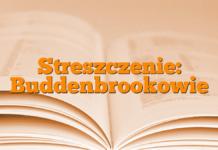 Streszczenie: Buddenbrookowie