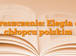 Streszczenie: Elegia o… chłopcu polskim