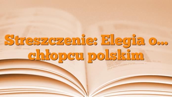 Streszczenie Elegia O Chłopcu Polskim Młodzieżowypl