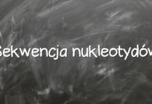 Sekwencja nukleotydów