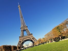 Nauka języka francuskiego - czy to się opłaca?